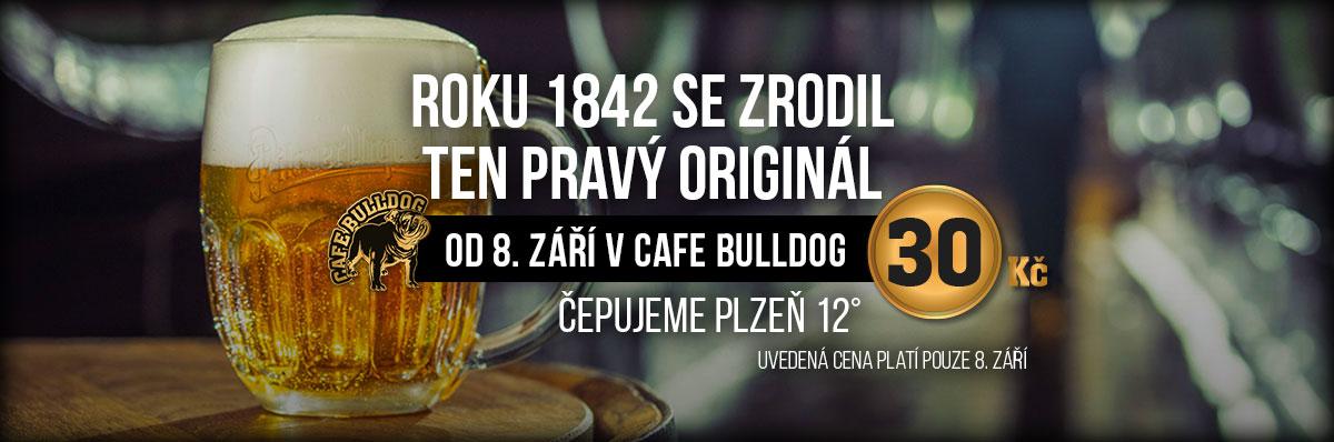 Cafe Bulldog Breclav Plzen
